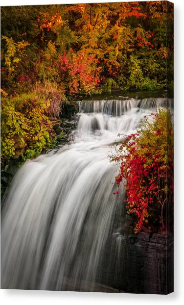 Fall At Minnehaha Falls Canvas Print