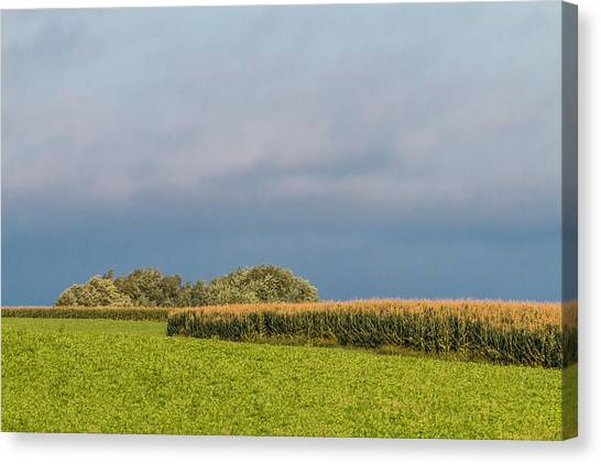 Farmer's Field Canvas Print