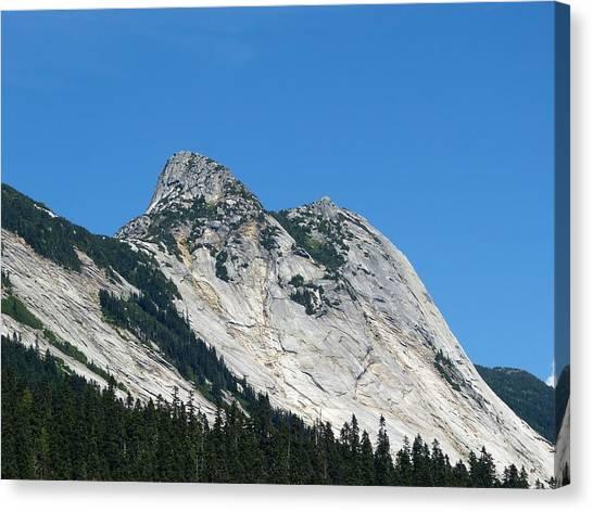Yaks Canvas Print - Yak Peak by Will Borden