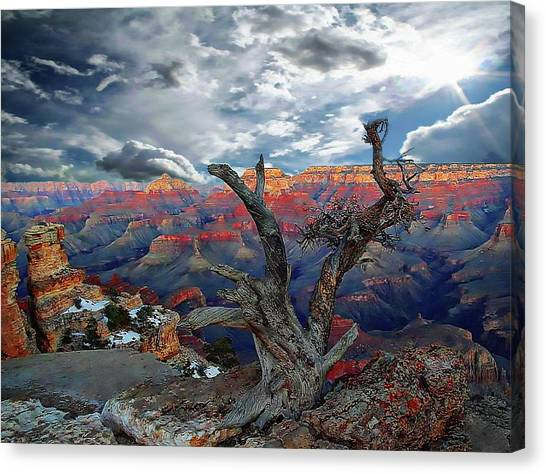 Yaki Point Grand Canyon Canvas Print