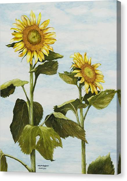 Yana's Sunflowers Canvas Print