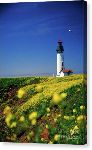 Yaquina Head Lighthouse- V2 Canvas Print