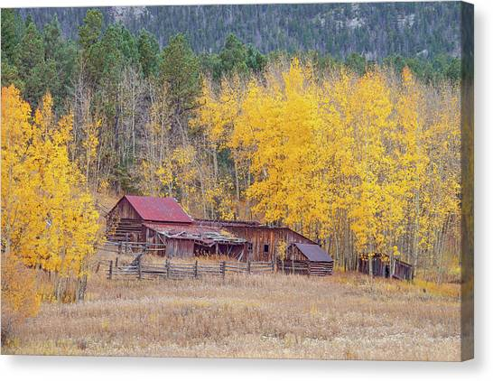 Yearning For The Tranquility Of A Rustic Milieu  Canvas Print