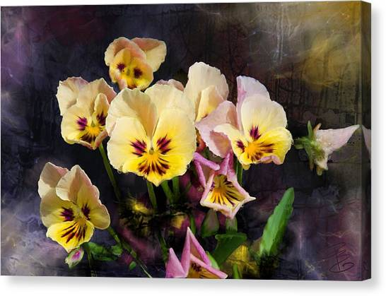 Yellow And Pink Pansies Canvas Print
