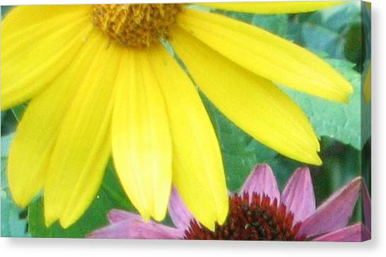 Yellow And Purple Canvas Print by Krista Barth