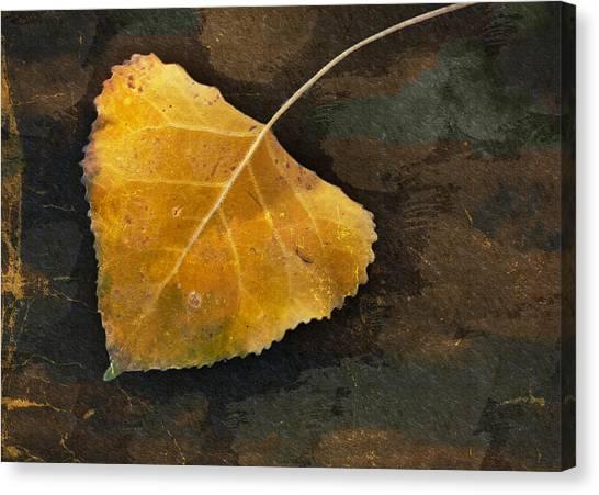 Yellow Autumn Leaf Canvas Print