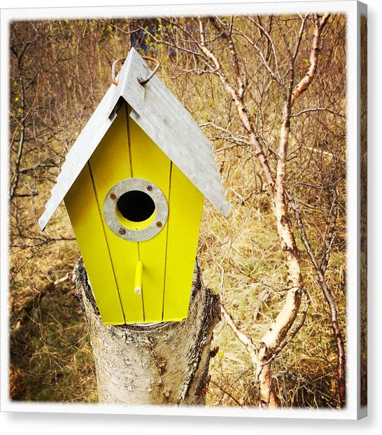 House Canvas Print - Yellow Bird House by Matthias Hauser