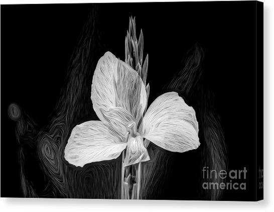 Yellow Black And White Canvas Print