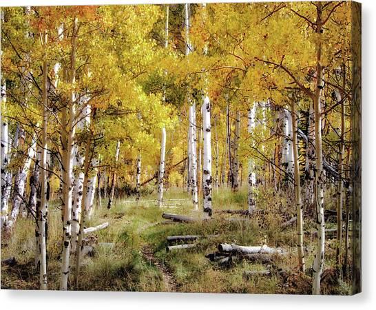 Yellow Bliss Canvas Print