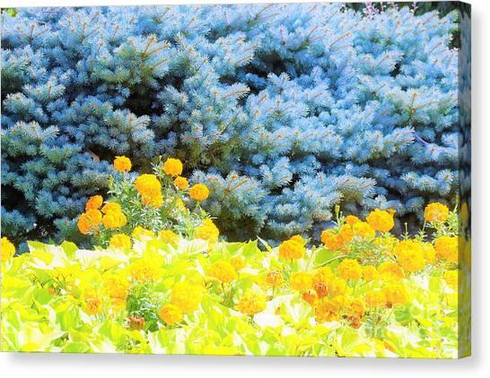 Yellow, Blue, Orange Canvas Print