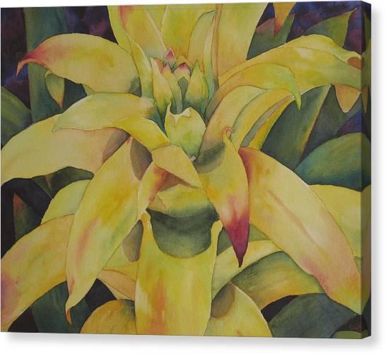 Yellow Bromeliad Canvas Print