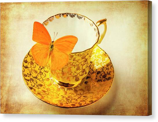 Saucer Canvas Print - Yellow Butterfly On Yellow Tea Cup by Garry Gay