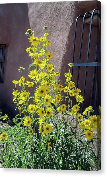 Yellow Composites At Ghost Ranch  Canvas Print