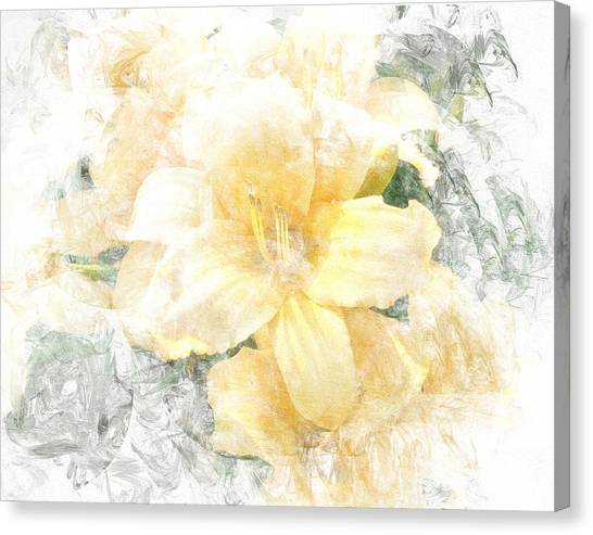 Yellow Daylily Canvas Print