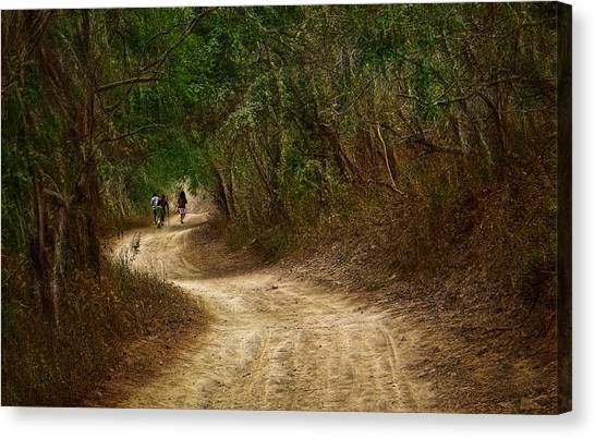 Yellow Dust Road Canvas Print