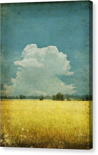 Border Wall Canvas Print - Yellow Field On Old Grunge Paper by Setsiri Silapasuwanchai