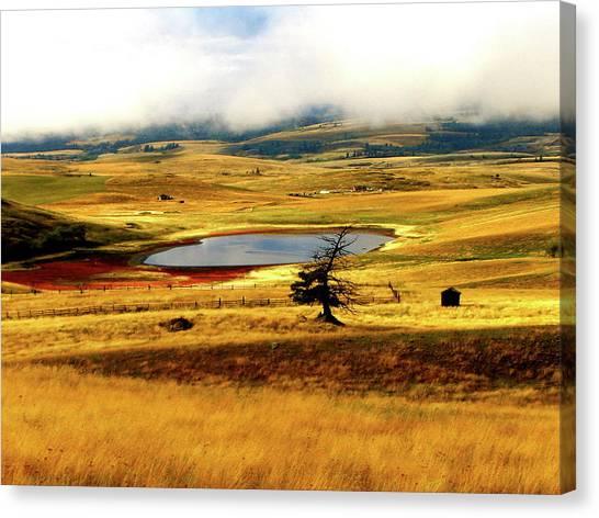Yellow Fields Canvas Print