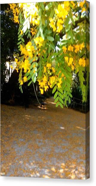 Smallmouth Bass Canvas Print - Yellow Flowers Hanging On The Tree by Anamarija Marinovic