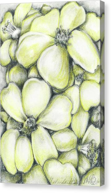 Yellow Flowers Pencil Canvas Print