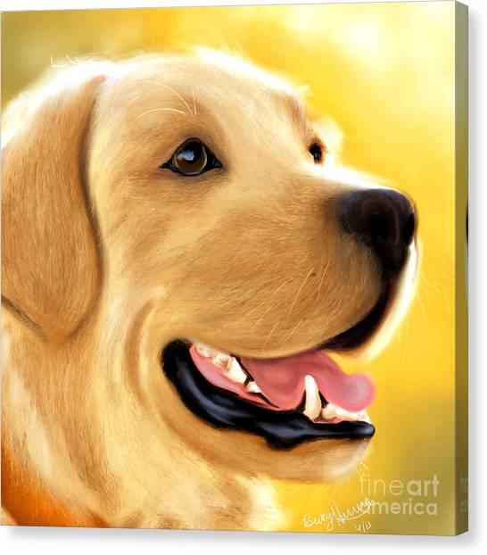 Yellow Lab Portrait Canvas Print