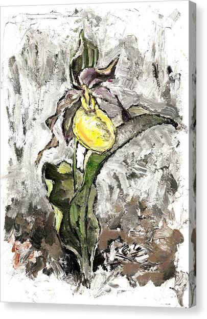 Yellow Lady's Slipper Canvas Print
