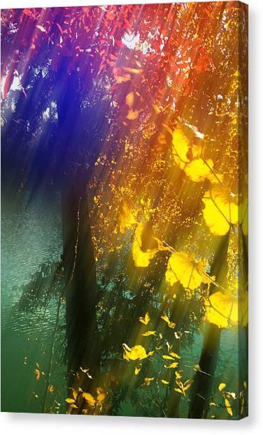 Yellow Leaf Along The Lake Canvas Print