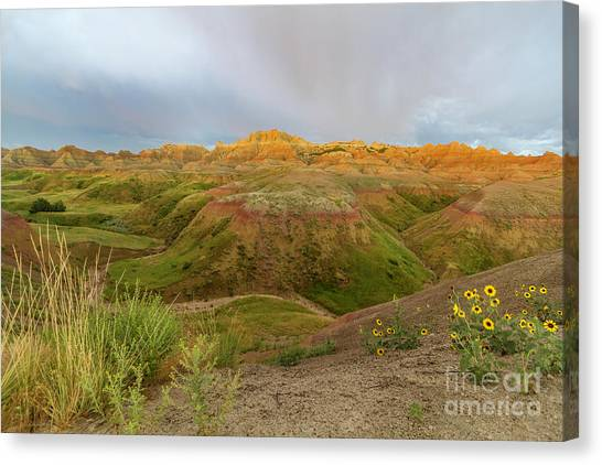 Yellow Mounds Morning Canvas Print