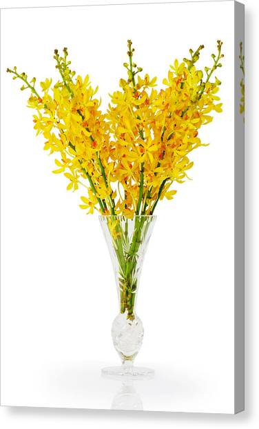 Yellow Orchid In Crystal Vase Canvas Print