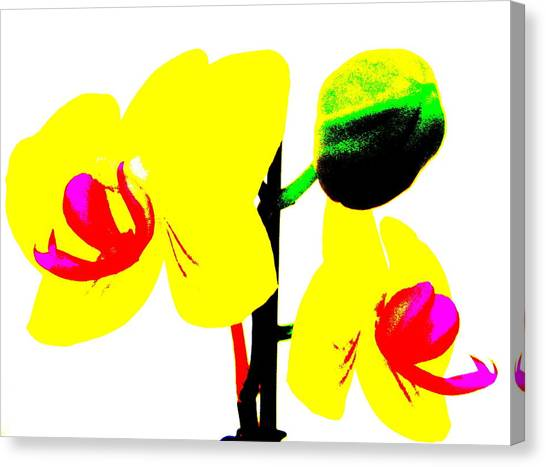 Yellow Orchids Abstract Canvas Print by Beth Akerman
