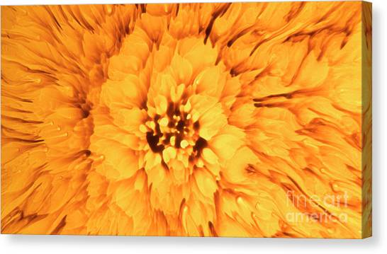Canvas Print featuring the photograph Yellow Flower Under The Microscope by Beauty of Science