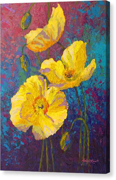 Vineyard Canvas Print - Yellow Poppies by Marion Rose