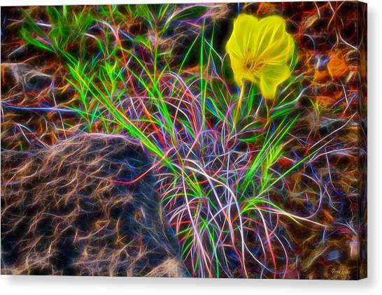 Yellow Primrose Electrify Canvas Print
