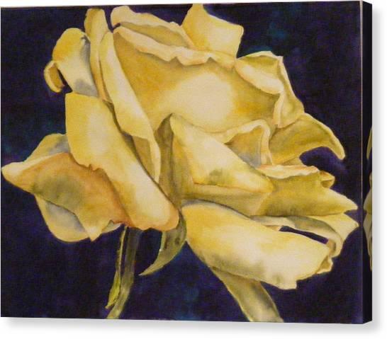 Yellow Rose 102 Canvas Print