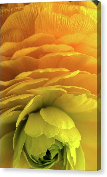 Yellow Stack Canvas Print