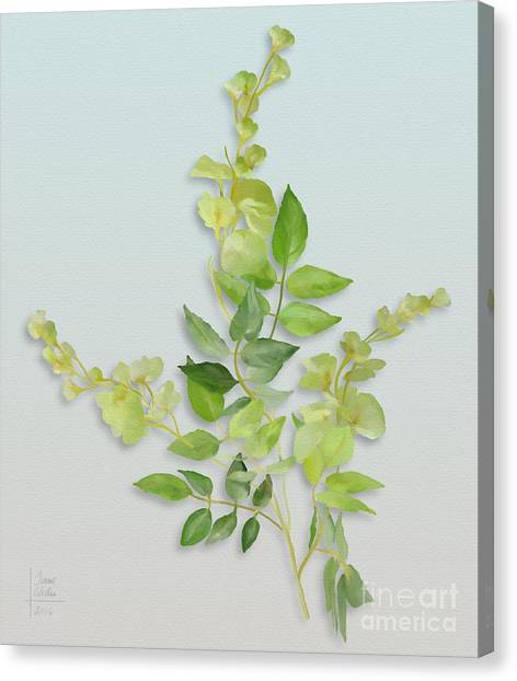 Canvas Print featuring the painting Yellow Tiny Flowers by Ivana Westin