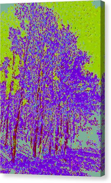 Yellow Trees D4 Canvas Print by Modified Image