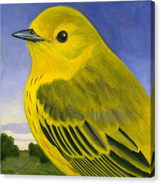 Warblers Canvas Print - Yellow Warbler by Francois Girard