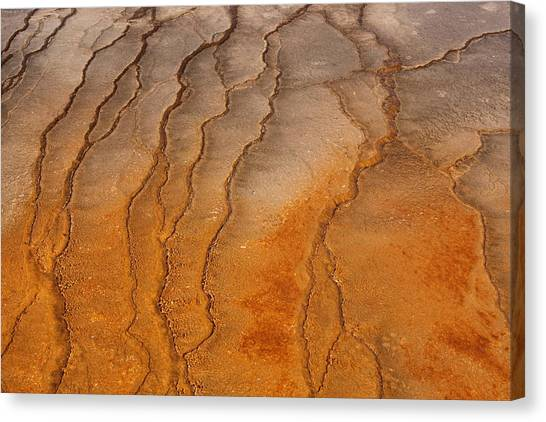 Yellowstone 2530 Canvas Print