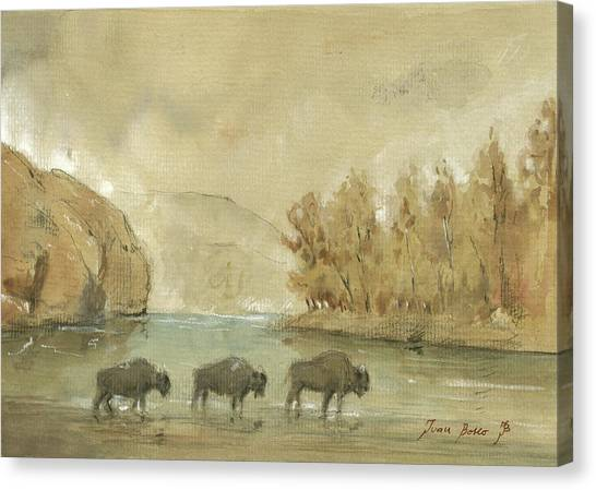Yellowstone National Park Canvas Print - Yellowstone And Bisons by Juan Bosco