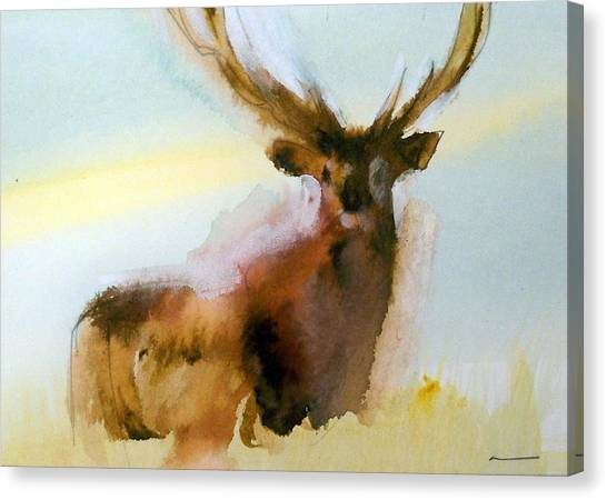Yellowstone  Elk Canvas Print