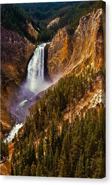 Wyoming State Tree Canvas Prints (Page #4 of 19) | Fine Art