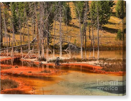 Yellowstone Caldera Canvas Print - Yellowstone Hot Springs by Adam Jewell