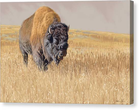 Yellowstone Canvas Print - Yellowstone King by Aaron Blaise