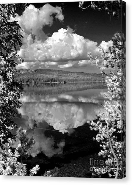 Yellowstone Lake Canvas Print by Diane E Berry