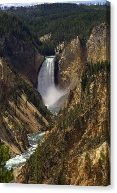 Yellowstone Lower Falls Canvas Print by Patrick  Flynn