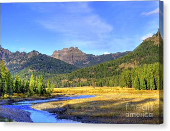Yellowstone National Park Landscape Canvas Print