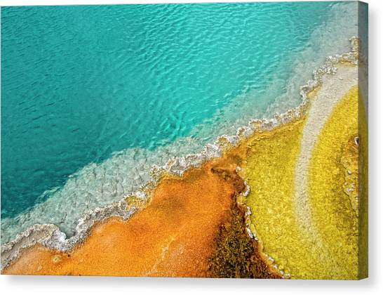 Yellowstone National Park Canvas Print - Yellowstone West Thumb Thermal Pool Close-up by Bill Wight CA