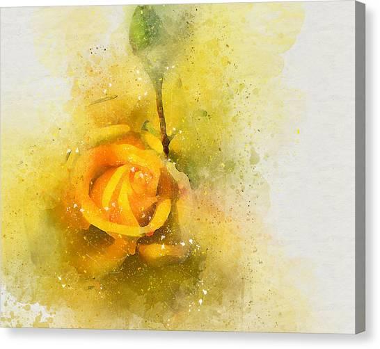 Yelow Rose Canvas Print