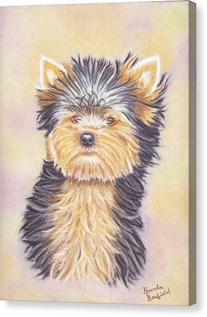 Yorkie Puppy Canvas Print