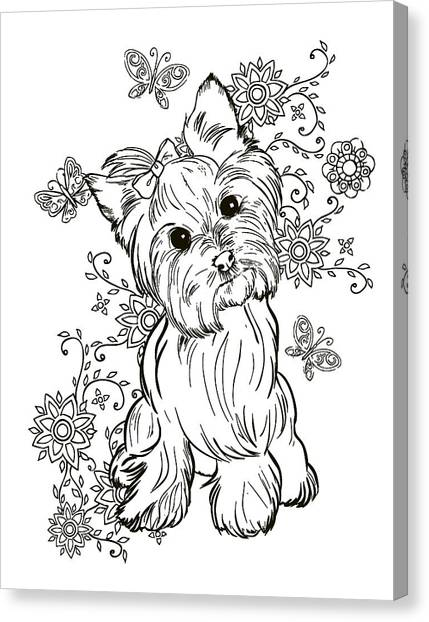 French Bull Dogs Canvas Print - Yorkie Terrier by Cindy Elsharouni